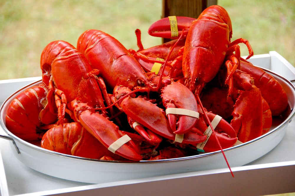 TLC Lobsterfest 2020